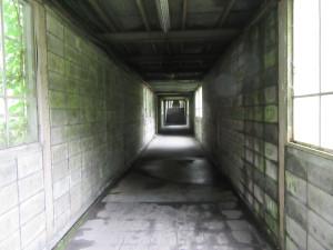 【画像】下り地下ホームに続く通路2