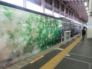 【画像】現美新幹線の車体2