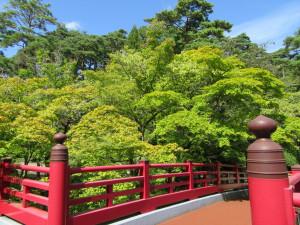 【画像】弥彦公園 観月橋