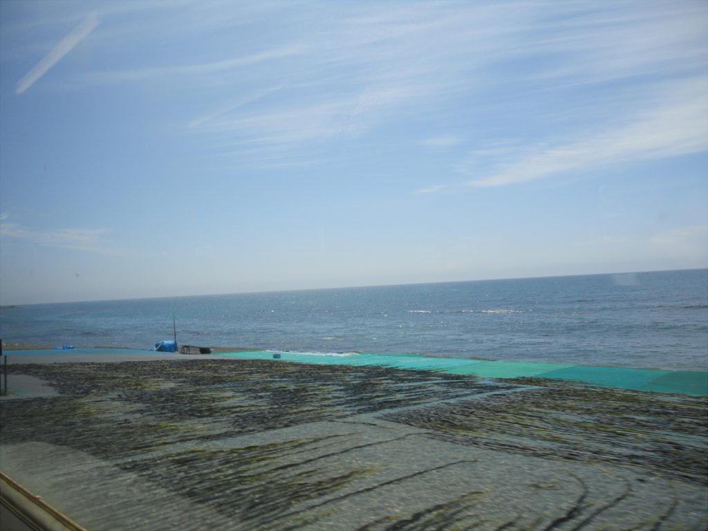 【画像】日高本線の車窓から