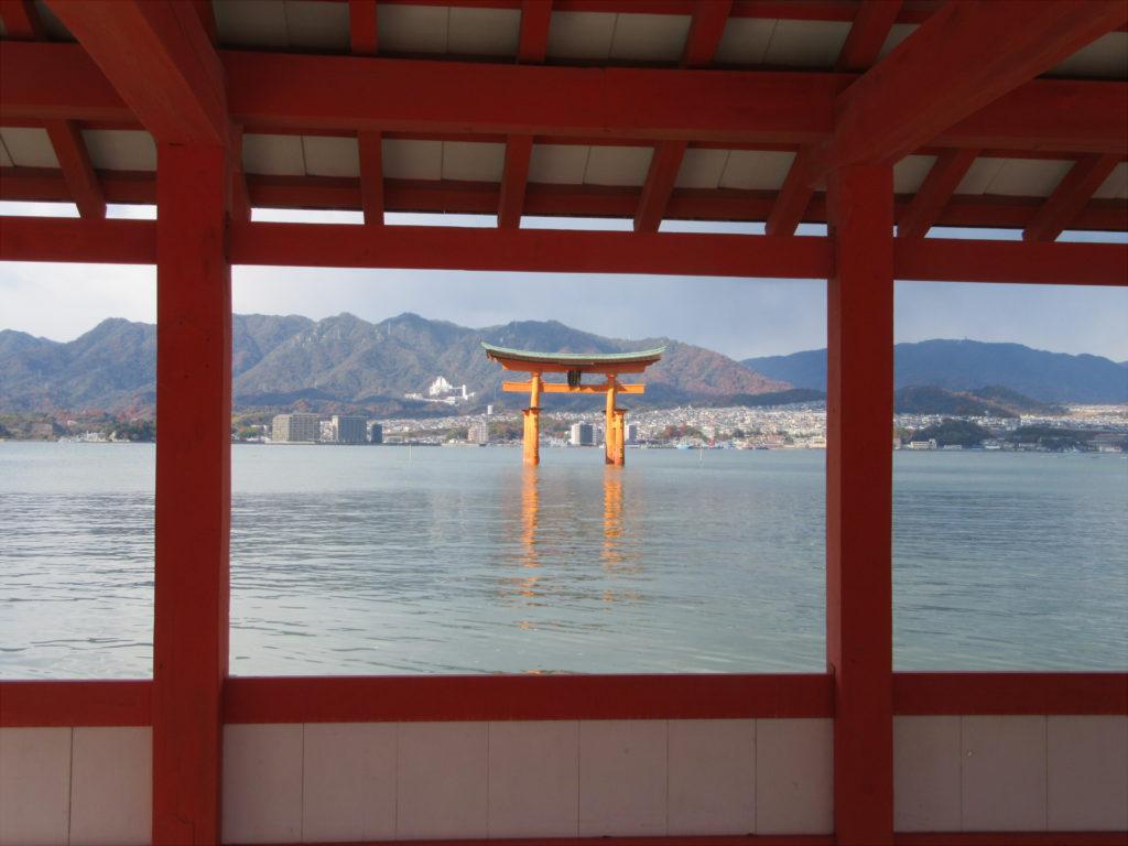 厳島神社の大鳥居(社殿から)