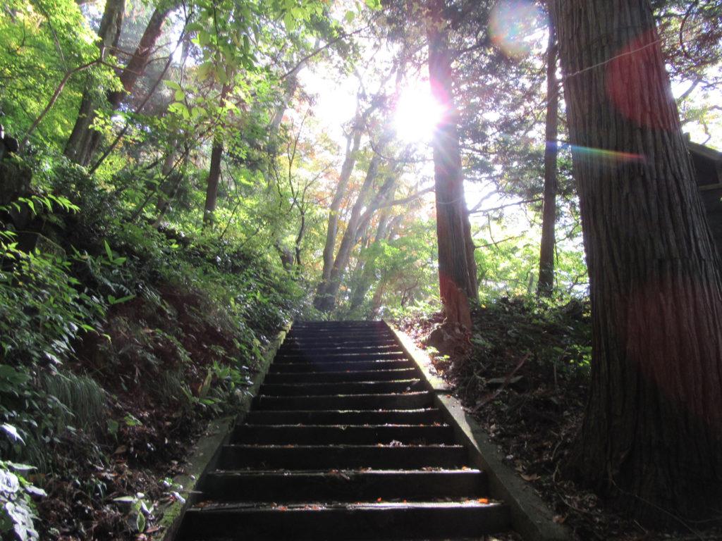 羽黒山湯上神社 登山道(石段)