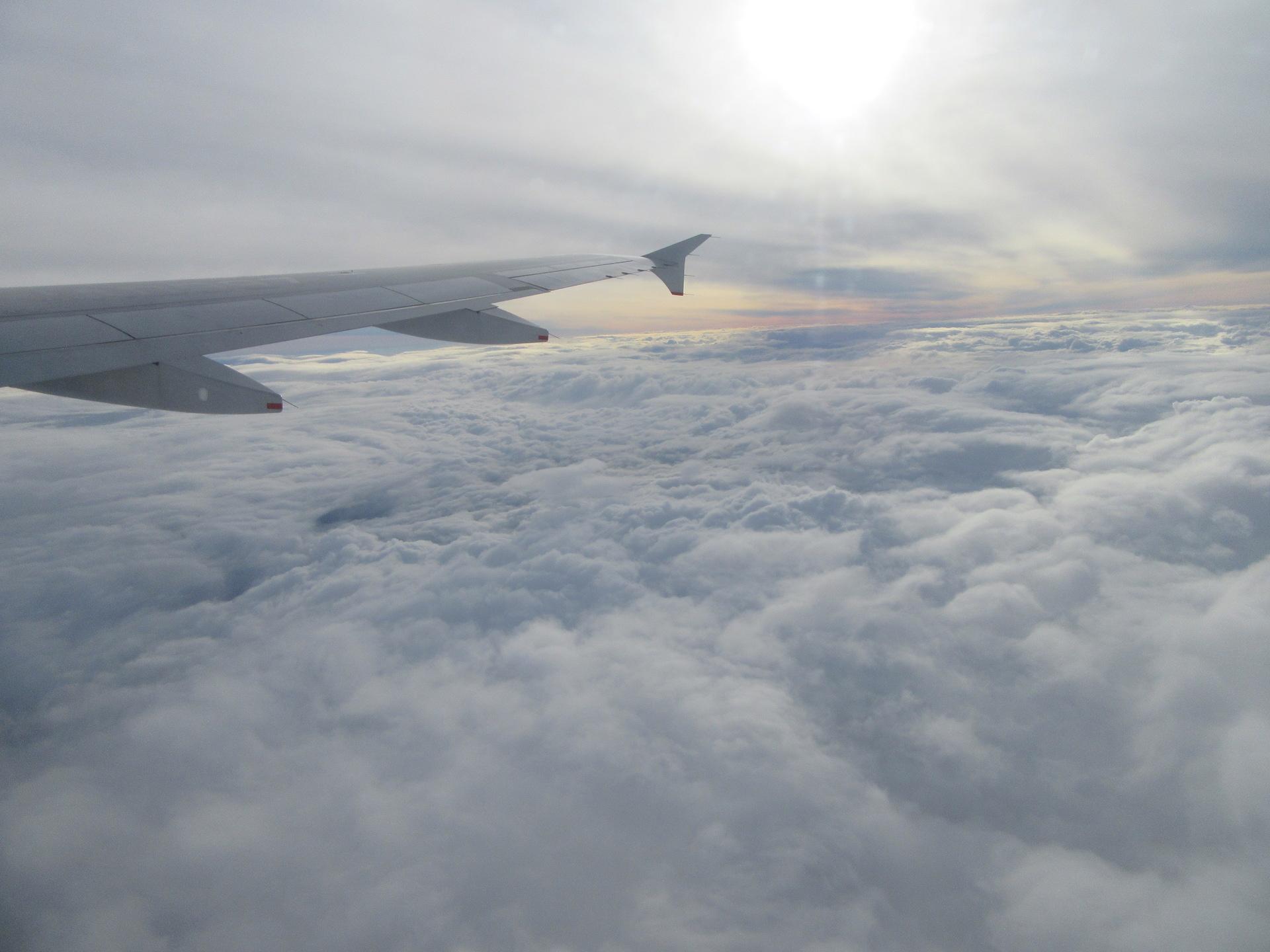 飛行機(鳥取空港→羽田空港)